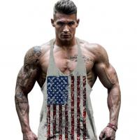 Одежда для бодибилдинга мужская USA Gray лот 384