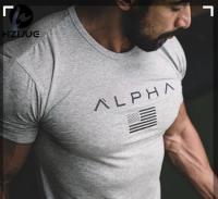 Футболка спортивная Alpha Gray лот 4085