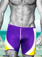 Плавки-джаммер(Jammer) AussieBum Wrestleme Hipster Purple #119