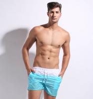 Шорты мужские Desmiit New Blue #298