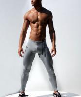 Мужские лосины для спорта AQUX Gray #1007